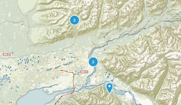 Palmer, Alaska Forest Map