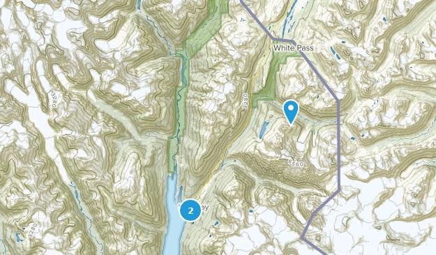 Best Bird Watching Trails near Skagway, Alaska | AllTrails