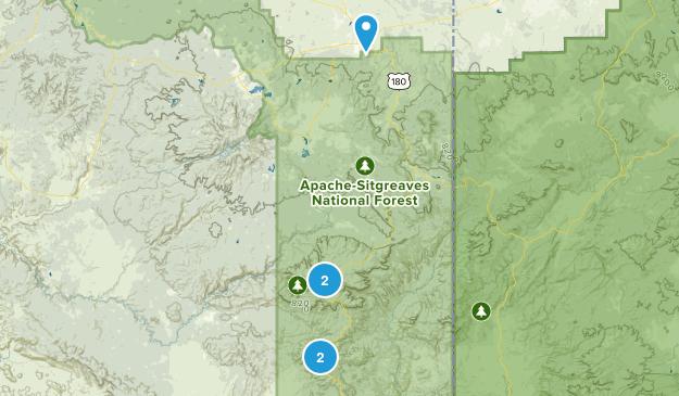 Clifton, Arizona Dogs On Leash Map