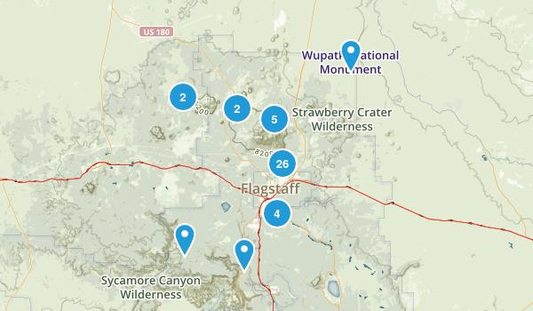 Flagstaff, Arizona Forest Map