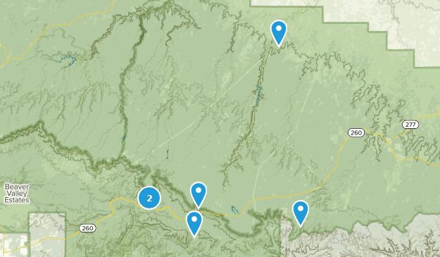 Forest Lakes, Arizona Bird Watching Map