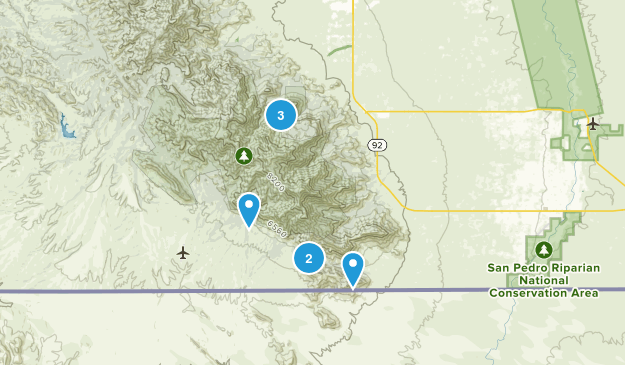 Hereford, Arizona Forest Map
