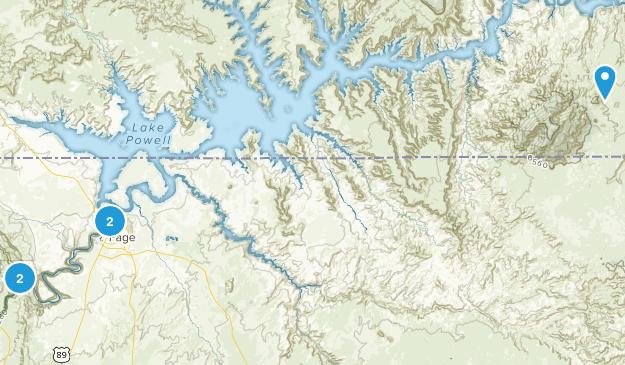 Page, Arizona Wildlife Map