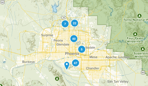 Phoenix, Arizona Wild Flowers Map