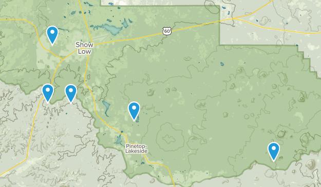 Show Low, Arizona Dogs On Leash Map