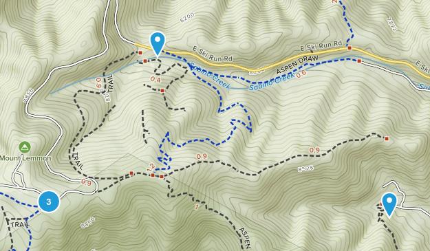 Summerhaven, Arizona Forest Map
