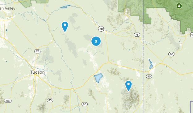Willcox, Arizona Nature Trips Map