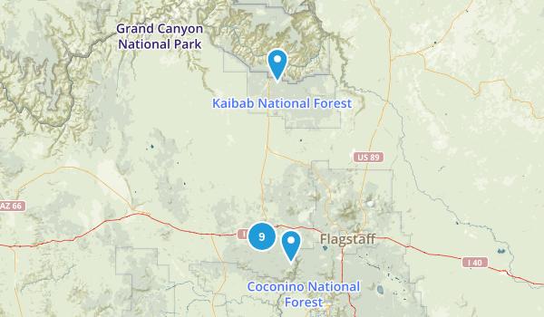 Williams, Arizona Hiking Map