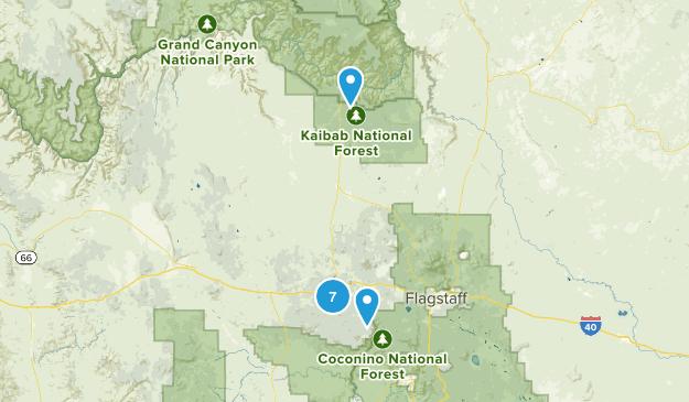 Williams, Arizona Nature Trips Map