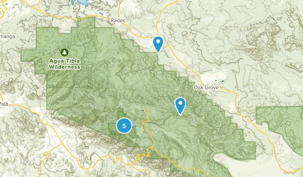 Aguanga, California Wild Flowers Map