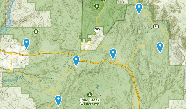 Alpine, California Birding Map