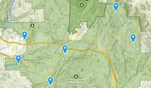 Alpine, California Wild Flowers Map