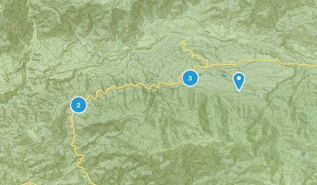Angelus Oaks, California Camping Map