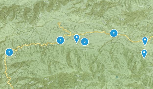 Angelus Oaks, California Forest Map