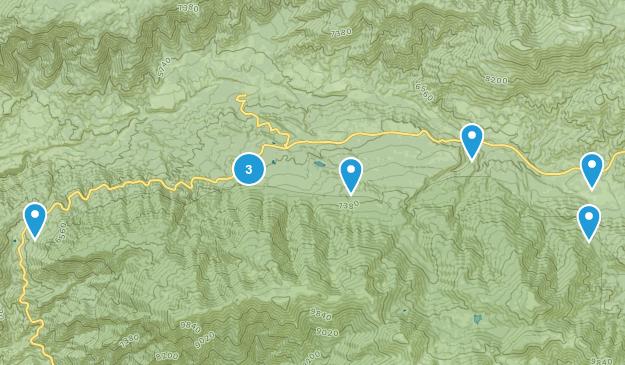 Angelus Oaks, California Nature Trips Map