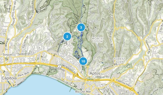 Aptos, California Wild Flowers Map