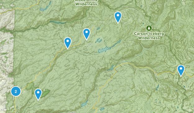 Arnold, California Trail Running Map