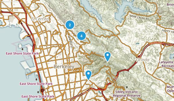 Berkeley, California Forest Map
