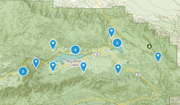 Big Bear City, California Wild Flowers Map