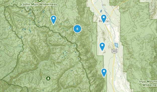Big Pine, California Wild Flowers Map