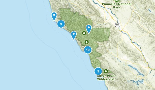 Big Sur, California Forest Map