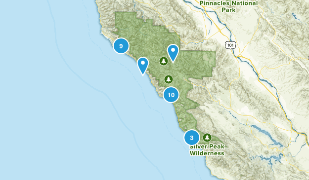 Big Sur, California Forest Map