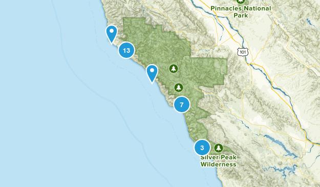 Big Sur, California Wildlife Map