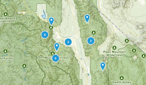 Bishop, California Dogs On Leash Map