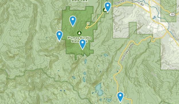 Blairsden-Graeagle, California Forest Map