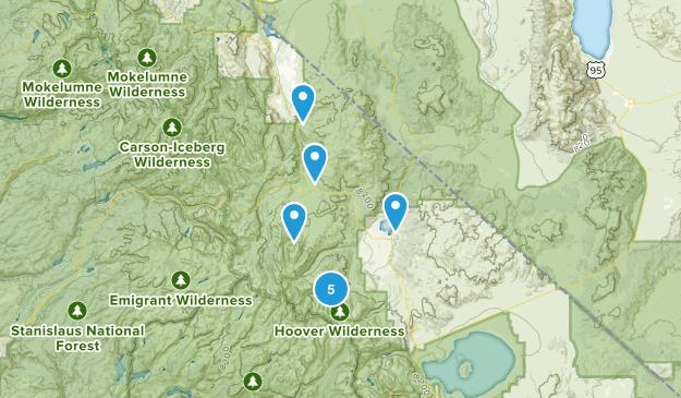 Bridgeport, California Dog Friendly Map