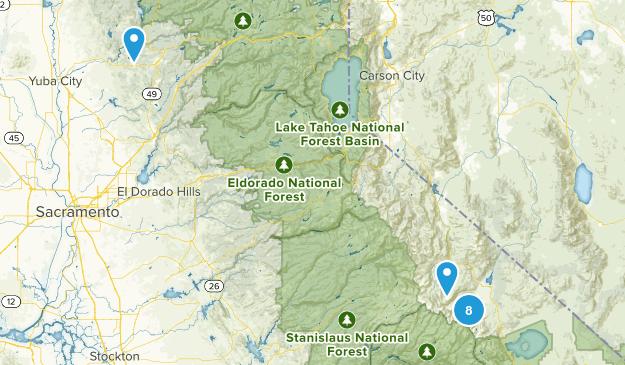 Bridgeport, California Wild Flowers Map