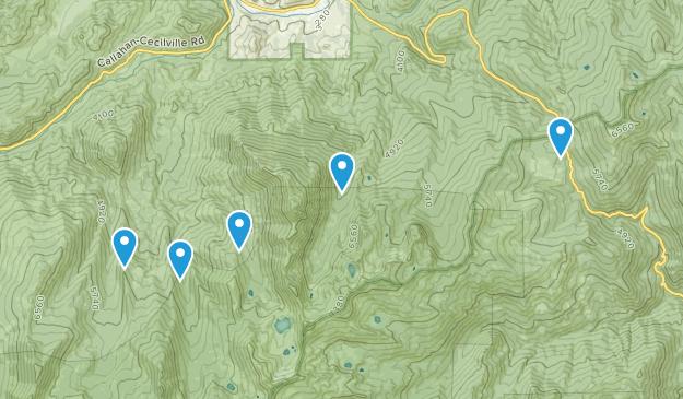 Callahan, California Wild Flowers Map
