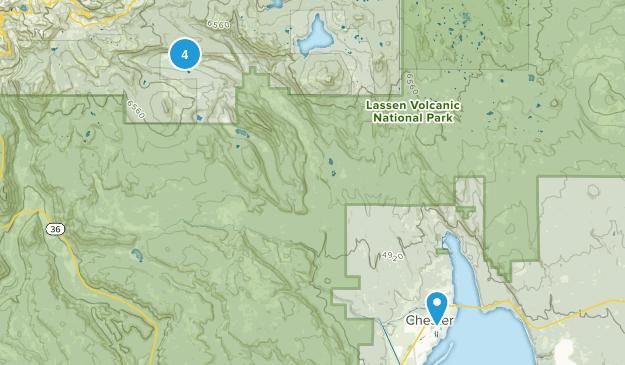 Chester, California Wild Flowers Map