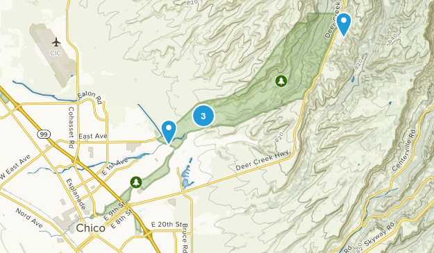 Chico, California Dogs On Leash Map