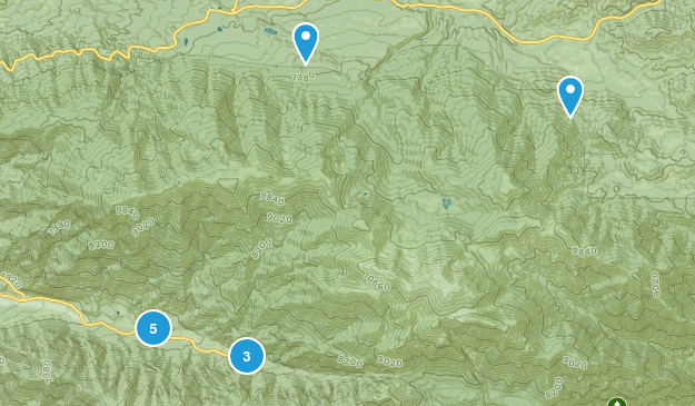 Forest Falls, California Forest Map