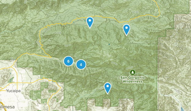 Forest Falls, California Hiking Map