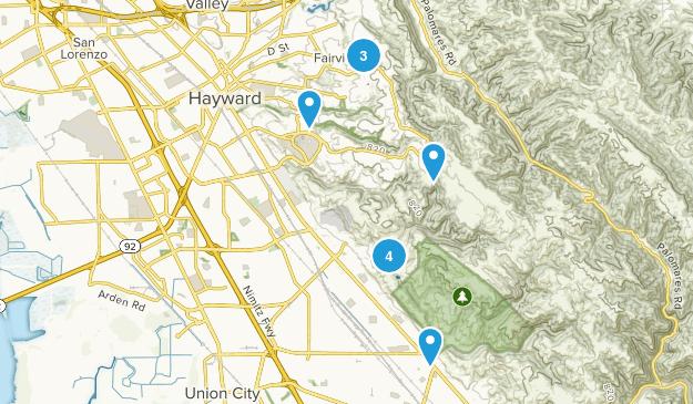 Hayward, California Wild Flowers Map