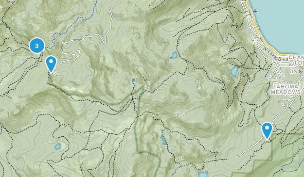 Homewood, California Lake Map