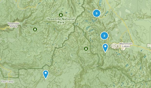 June Lake, California Backpacking Map