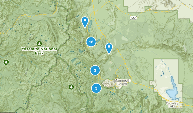 June Lake, California Birding Map