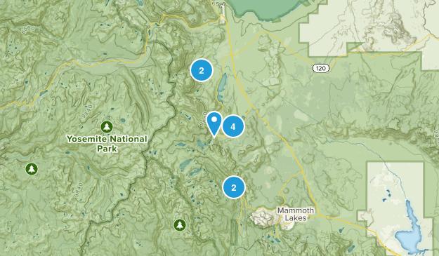June Lake, California Dog Friendly Map