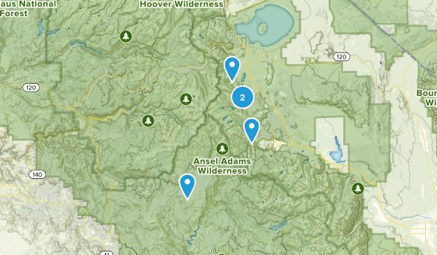June Lake, California Fishing Map