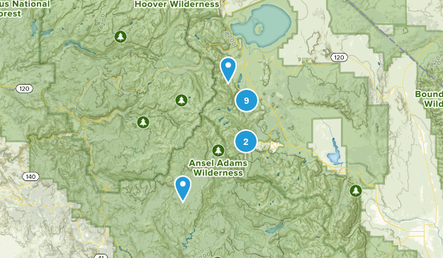 June Lake, California Wildlife Map