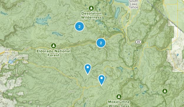 Kyburz, California Wildlife Map