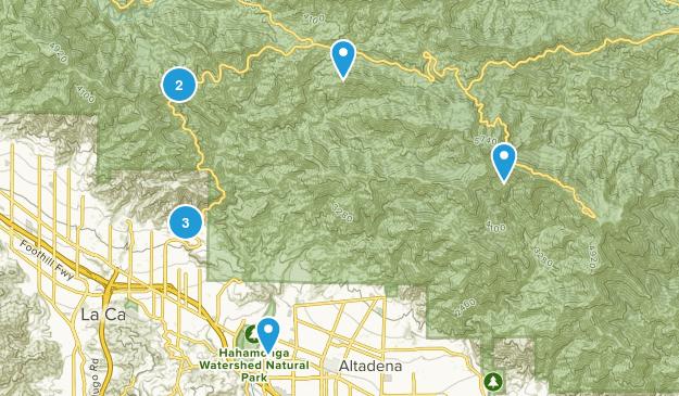 La Canada Flintridge, California Forest Map