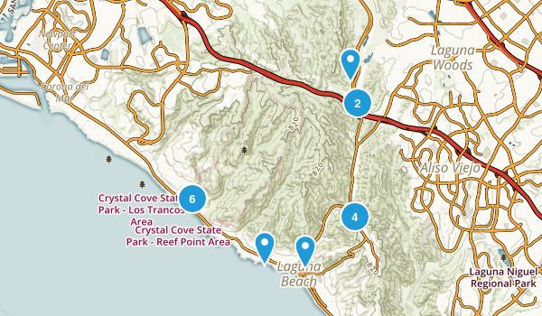 Best Wild Flowers Trails near Laguna Beach California 1003