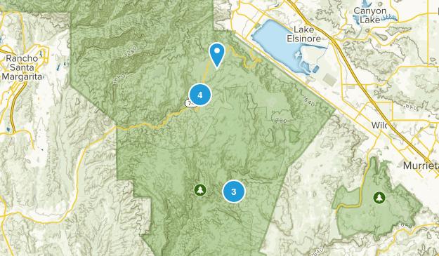 Lake Elsinore, California Forest Map