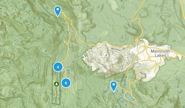 Lake Mary, California Birding Map