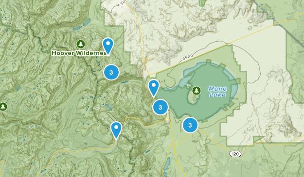 Lee Vining, California Dogs On Leash Map