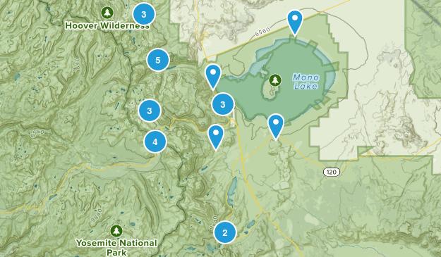 Lee Vining, California Lake Map